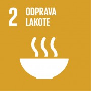 SLOGA_SDGs-slovenske_ikone-02