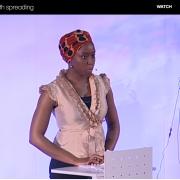 TED talk Chimamanda Ngozi Adichie